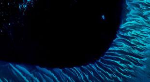 Niezwykłe zdjęcia zwykłych wybrzeży (ESA/NASA/USGS)