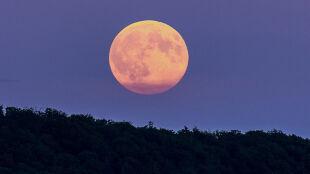 Już w poniedziałek superpełnia Księżyca. Ostatnia taka miała miejsce prawie 70 lat temu