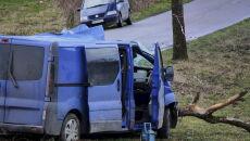 Tragiczny wypadek w Łyśniewie Sierakowickim (PAP/Jan Dzban)