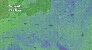 Temperatura w ciągu pięciu dni (Ventusky.com) | wideo bez dźwięku